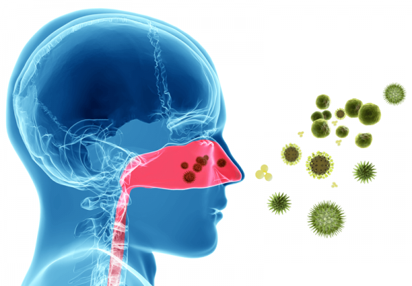 Acupuncture recommended for Hay Fever and Sinusitis