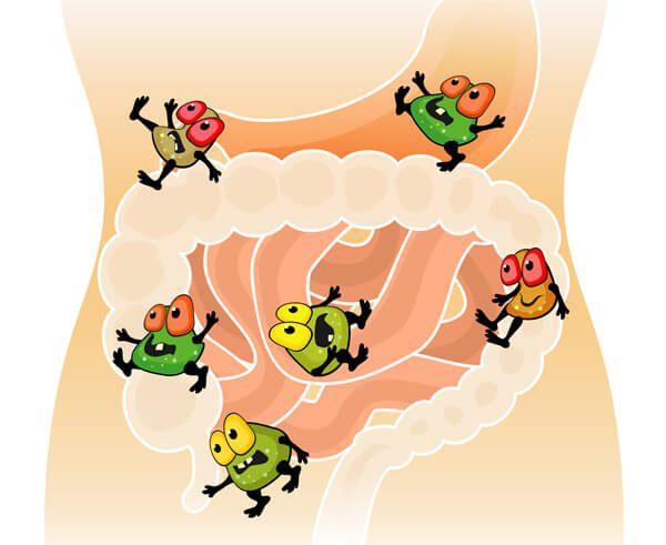 cartoon bugs in digestion