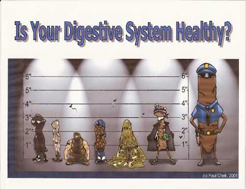 cartoon stool police lineup